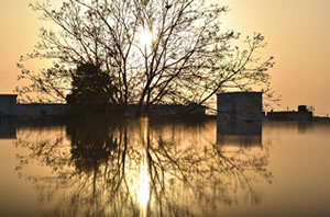 Do you need help with an insurance claim after flooding?